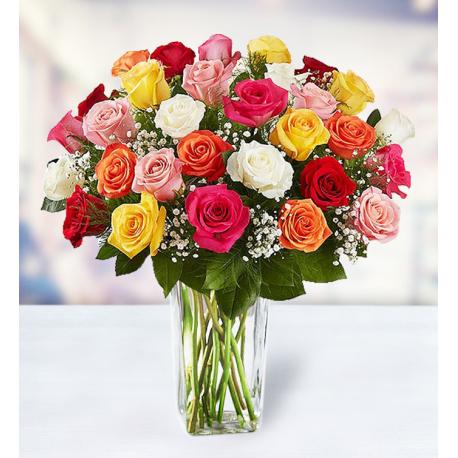 36 Multicolor Roses