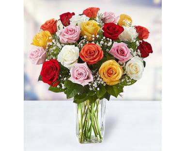 24 Multicolor Roses
