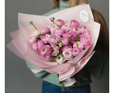 30 Pink Ranunculus