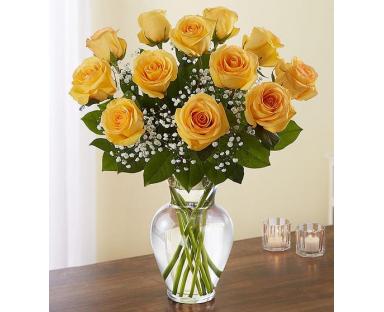 12 Yellow Roses Elegance