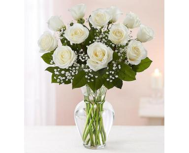 12 White Roses Elegance