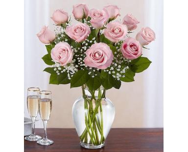 12 Pink Roses Elegance