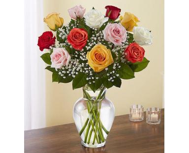 12 Multicolor Roses Elegance