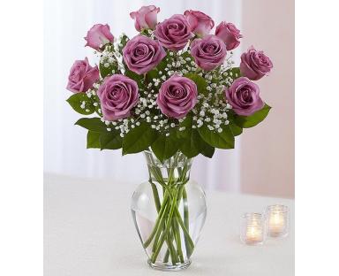 12 Purple Roses Elegance