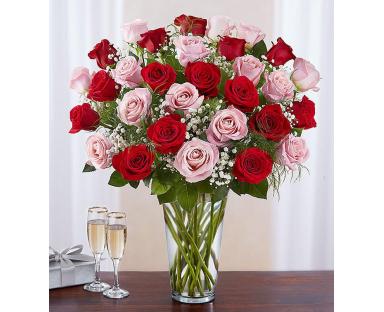 Pink & Red Roses Elegance