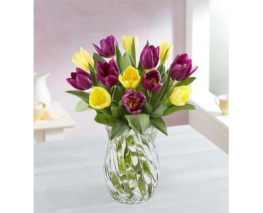 Spring Passion Tulip