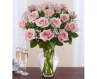20 Pink Roses Elegance