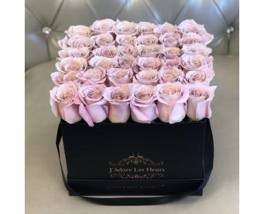 Roses In Square Box