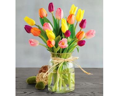 20 Mix Tulips
