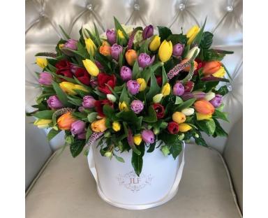 100 Mix Tulips