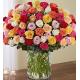 100 Premium Multicolor Roses