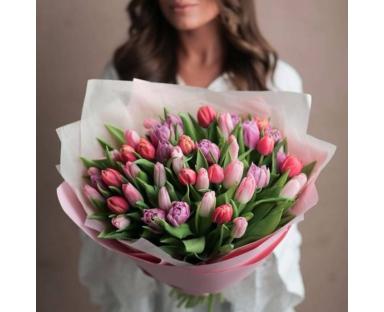 50 Mix Tulips