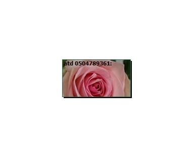 Ropi Rose Pink