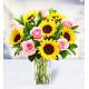 7 Helianthus 7 Roses
