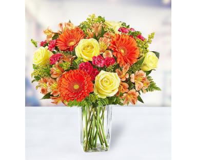 7 Roses 5 Gerberas 5 Carnations 7 Alstroemerias