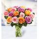 18 Multicolored Roses