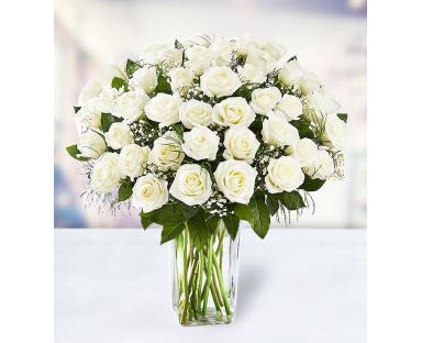 48 White Roses