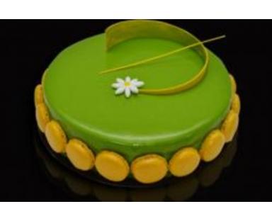 Choco Pistache Cake (8 Portions)