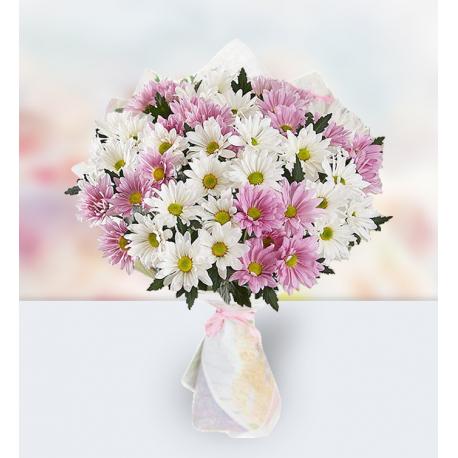 24 White and Purple Chrysanthemums