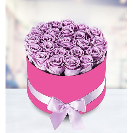 25 Purple Roses in Box